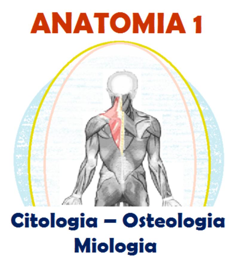 anatomia-1-citologia-osteologia-miologia-corso-fad