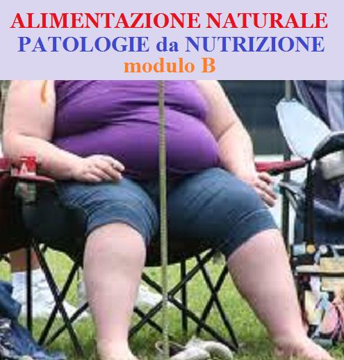 alimentazione-naturale-modulo-b-patologie-da-alimentazione